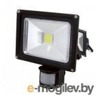 TDM-Electric Народный СДО10-2-Н-Д 10Вт 6500К SQ0336-0246 Black
